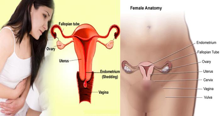 khi nào cần nội soi cổ tử cung