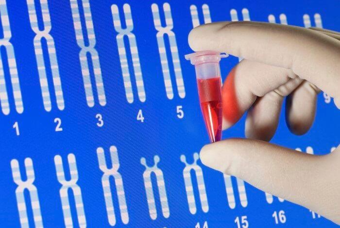 Xét nghiệm ADN giá bao nhiêu là hợp lý
